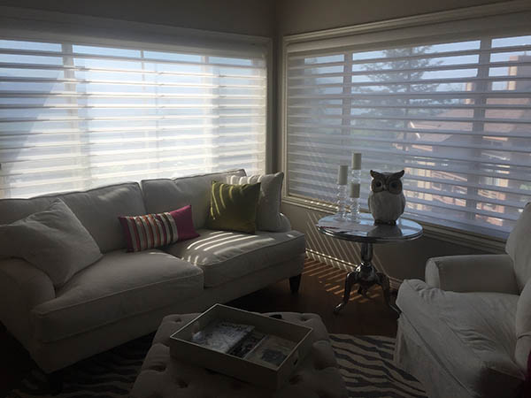 Hunter Douglas Pirouette and Silhouette Shadings